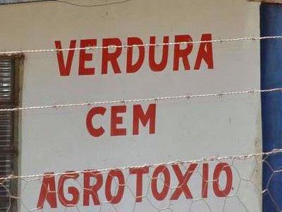 Brasil: FORMA CORRETA DE ENSINAR A LÍNGUA PORTUGUESA GERA POLÉMICA