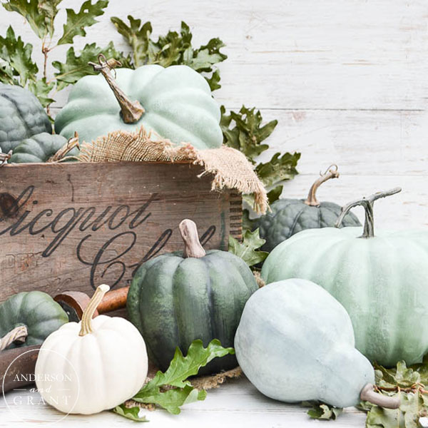 Learn how to DIY some realistic looking chalk painted pumpkins.  |  www.andersonandgrant.com