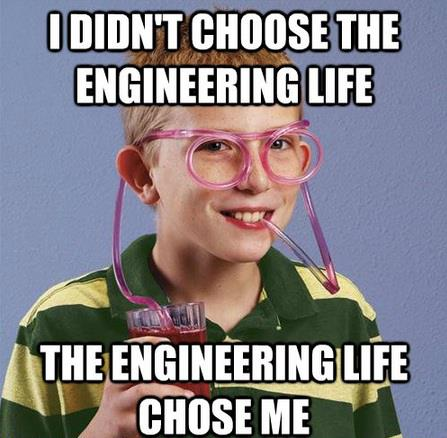 I didn't choose the engineering life - engineering troll