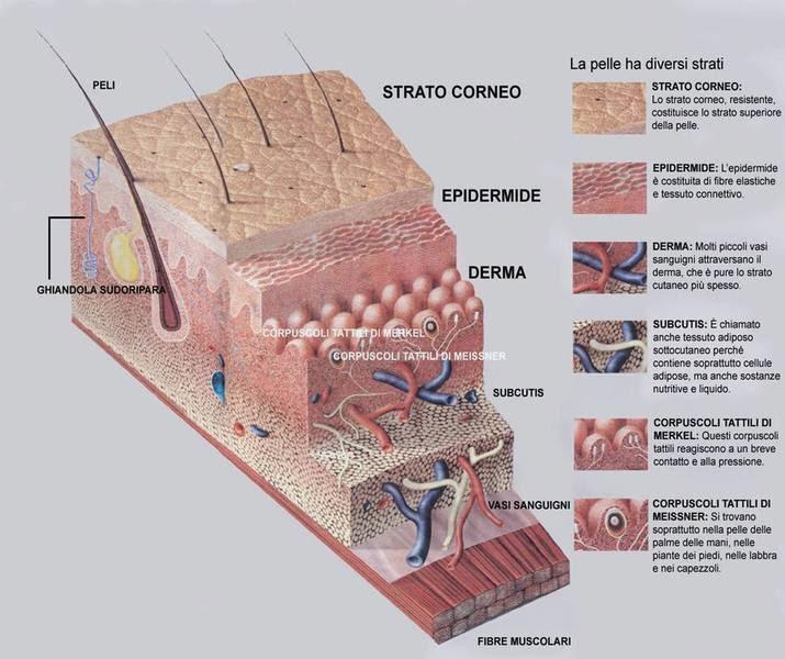 Come fermare posti di pigmentary su un corpo