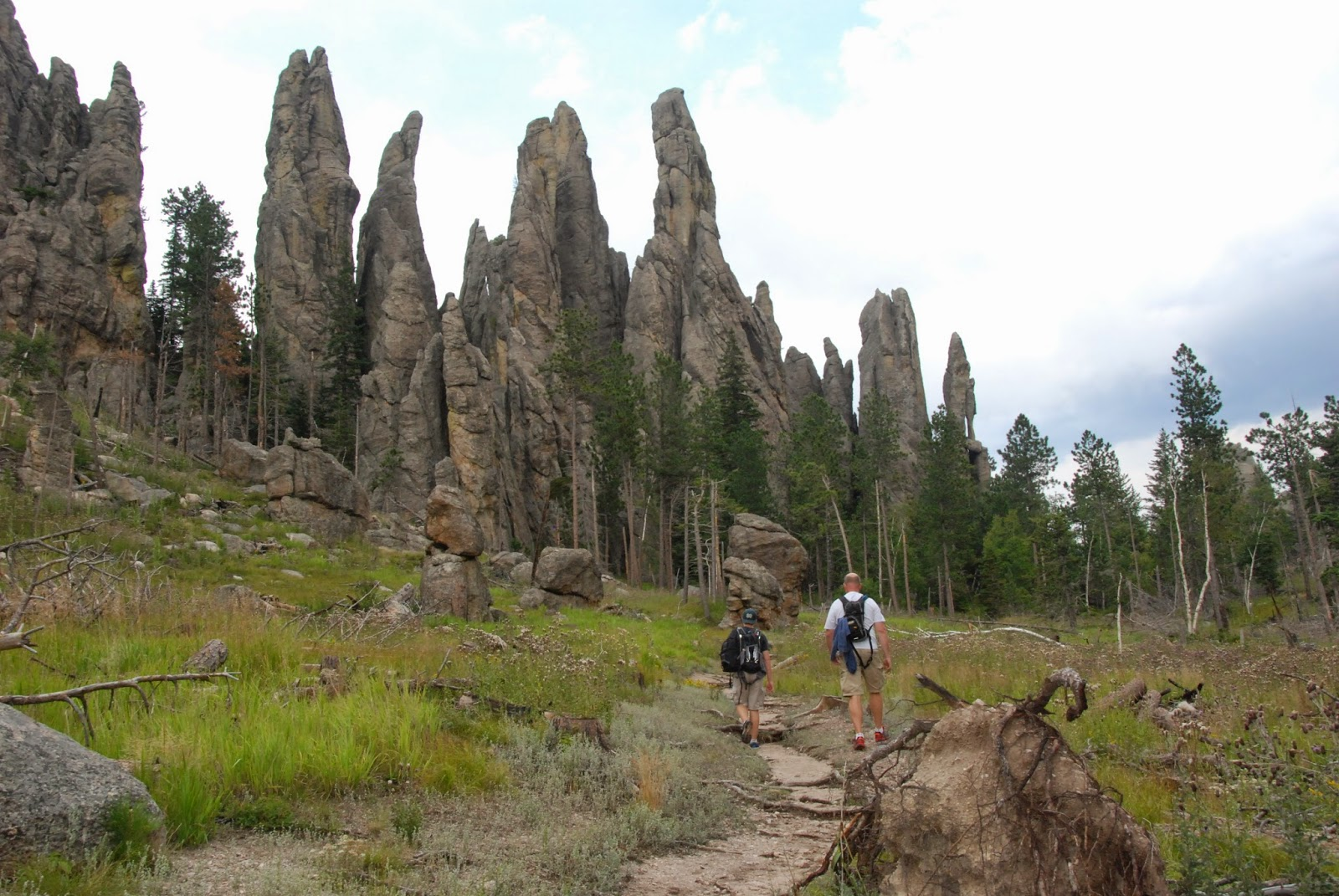 cathedral spires, black hills, south dakota