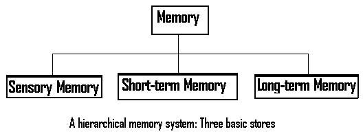memory is a three part system This chapter discusses the memory structures and processes in an to conserve system memory and virtual memory is used to store parts of.