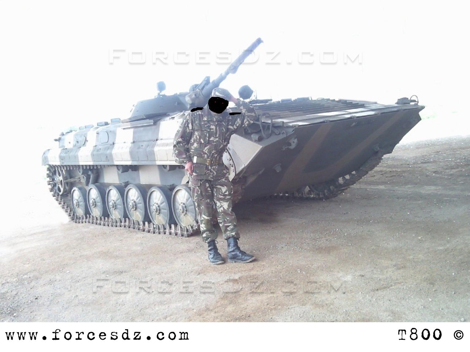 Fuerzas Armadas de Argelia BMP-1