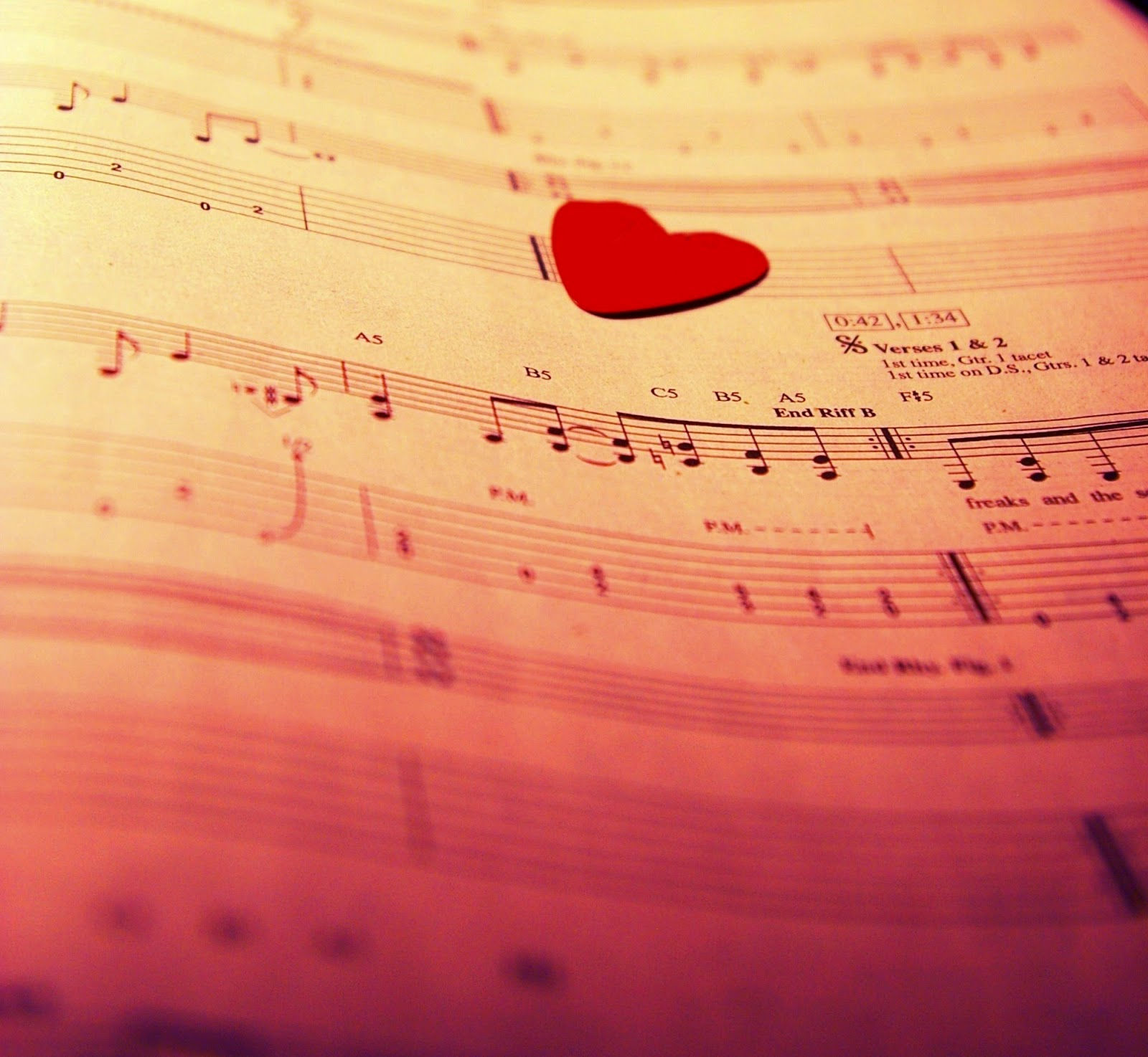 Love of Music photography