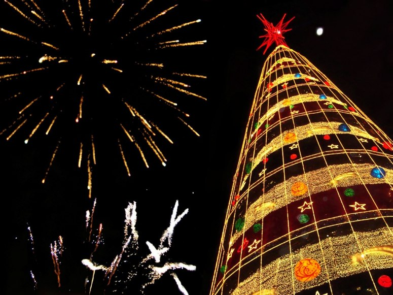 brazil christmas traditions tree - Christmas Traditions In Brazil