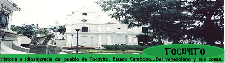 Tocuyito Web