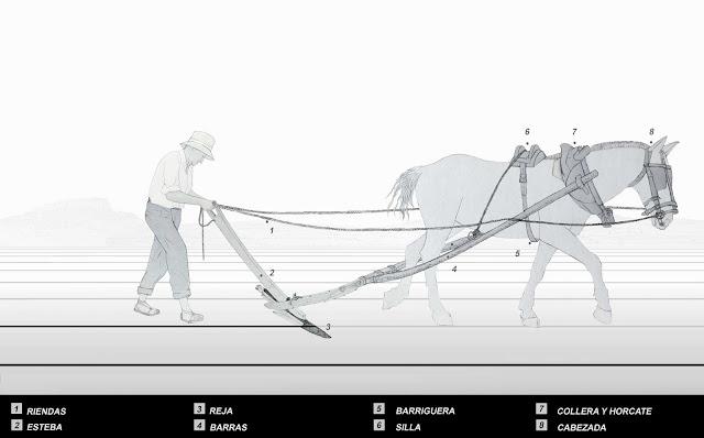 caballo percheron,arado,arar,riendas,esteba,reja,barras.barriguera,silla,collera,cabezada