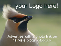*  Advertise Here!  *  Support Fair Isle Blogging!