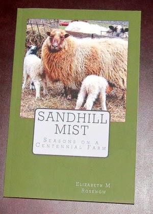 Sandhill Mist
