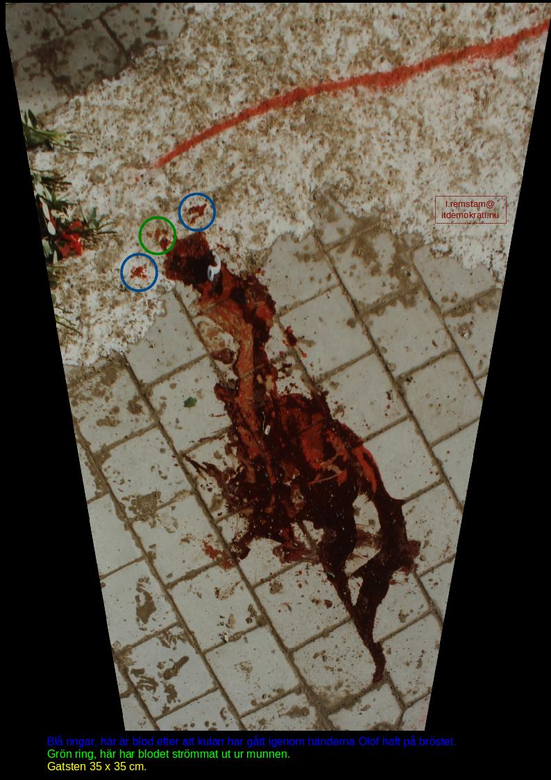 Blodpölen Palmemordet 2