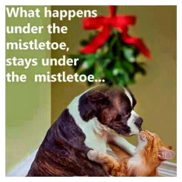 what happens under the mistletoe, stays under the mistletoe...