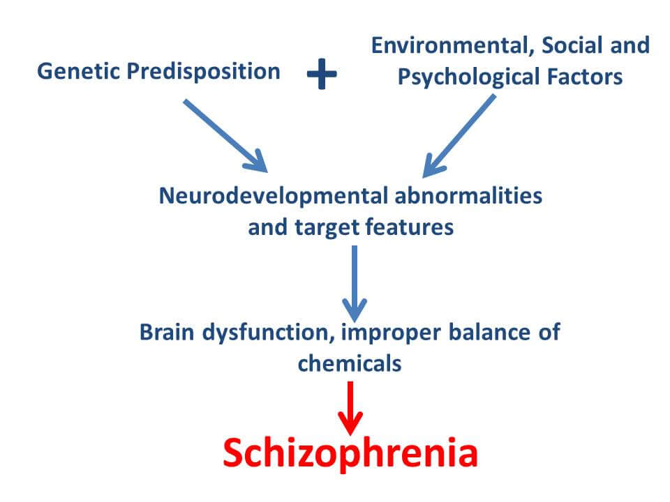 Schizophrenia thesis
