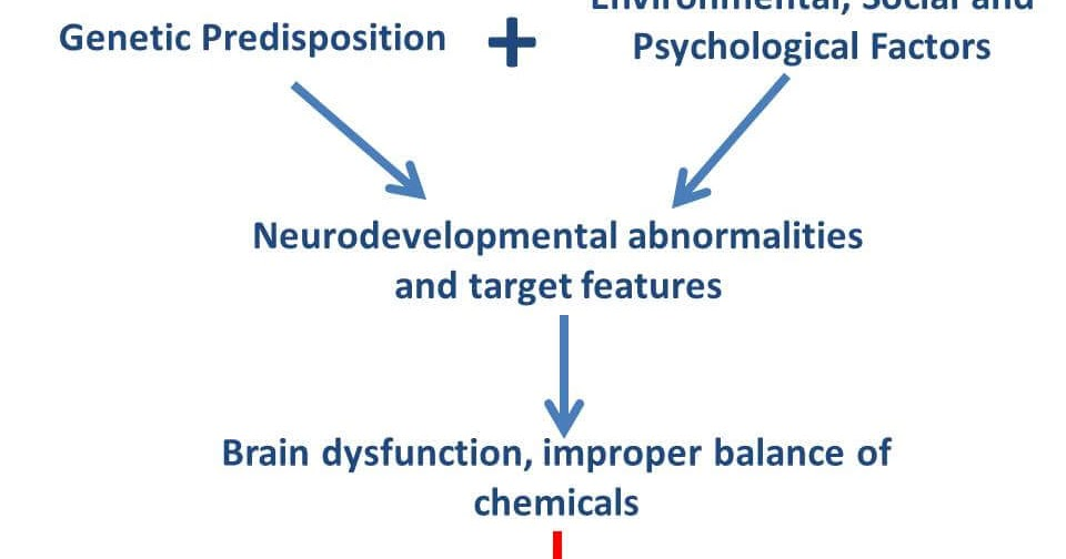 pathophysiology of schizophrenia and dementia The paranoia and delusions that can be part of dementia can be hard to coping with paranoia and delusions in alzheimer's disease examples, causes and coping.