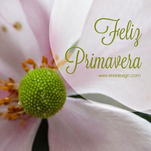 flor blanca imagen para facebook primavera