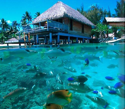 Fara zullee tahiti beach Overwater bungalows fiji