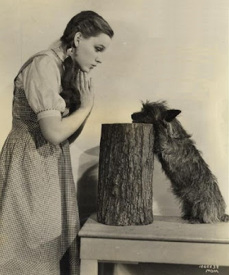 Judy Garland and Terry, aka Toto