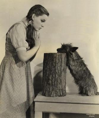 Judy Garland and Terry, aka Toto