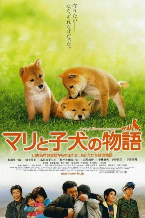 Mari và 3 Chú Chó Con