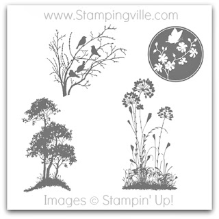 Stampin' Up! Serene Silhouettes Stamp Brush Set