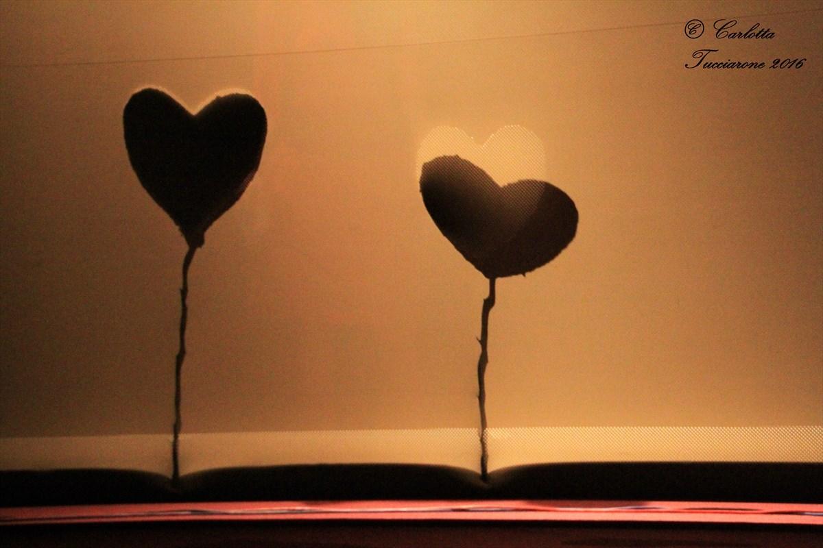 Venereo - L'amore trasmissibile