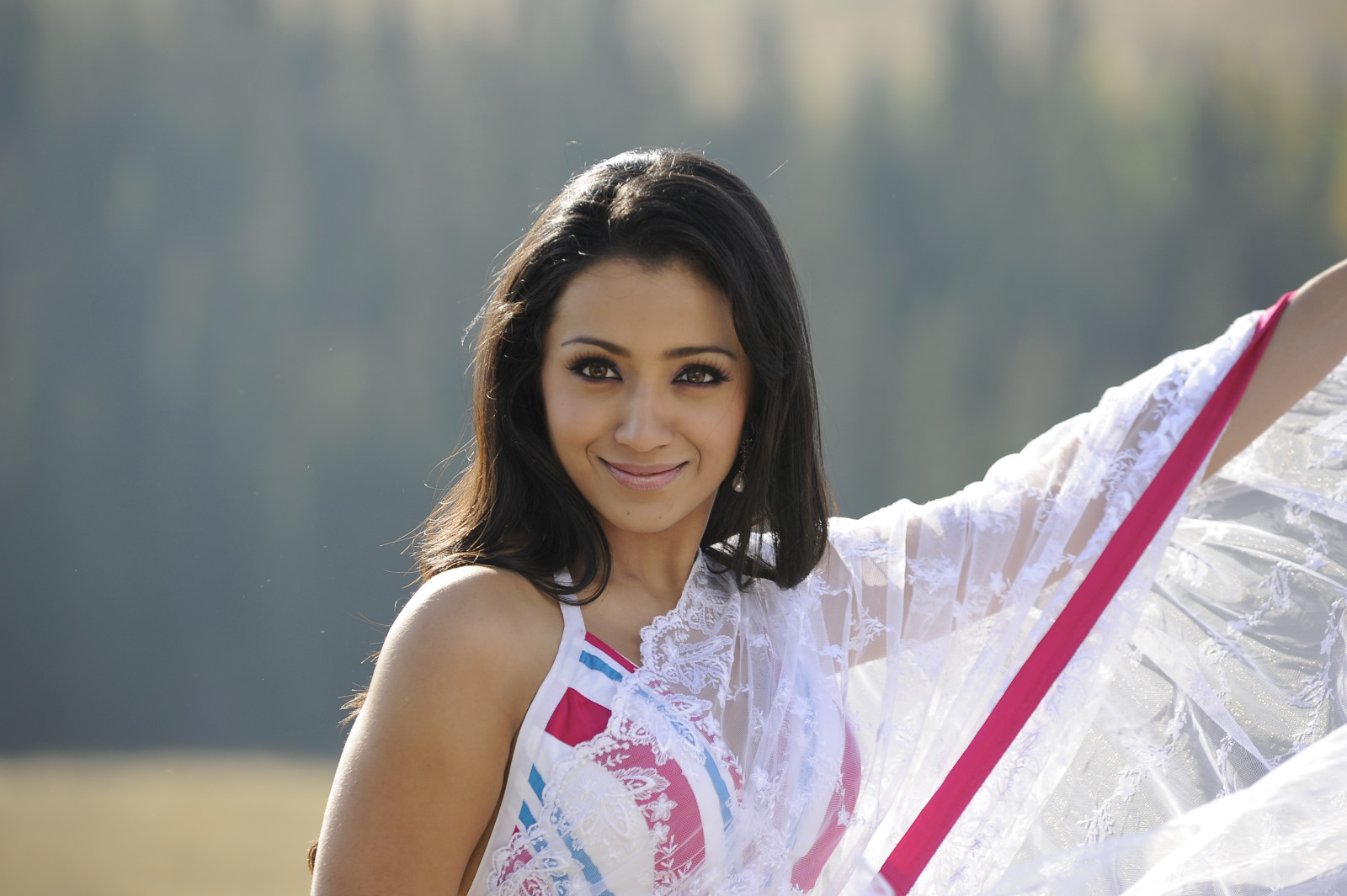 trisha in transparent saree