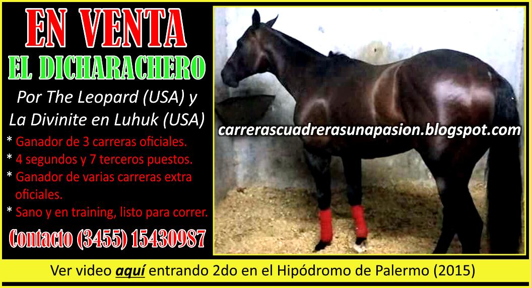 VENTA EL DICHARACHERO - 28.06