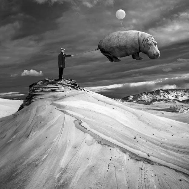 Photo Manipulations by Dariusz Klimczak11