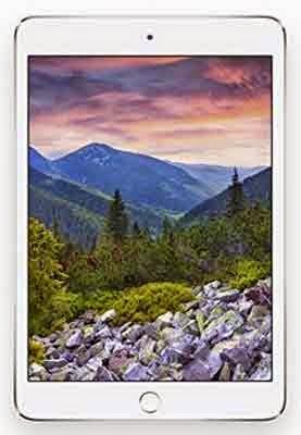 Newets Version Apple iPad mini 3 MGNV2LL/A (16GB, Wi-Fi Tablets