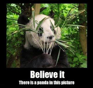Panda gemmer sig bag bambus