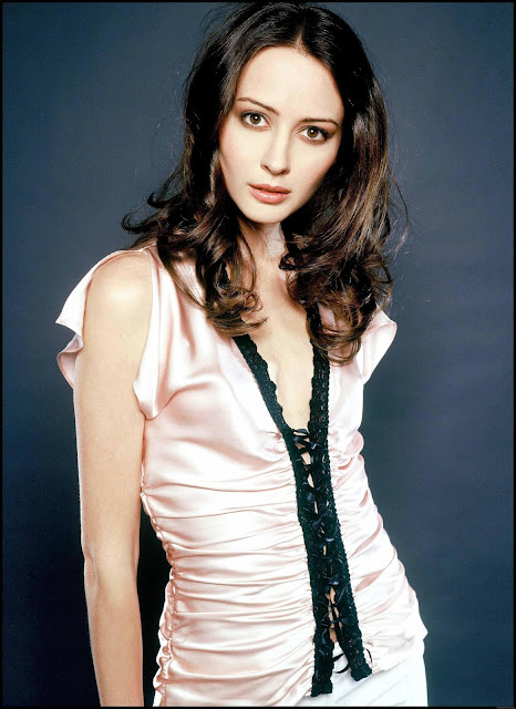 Amy Acker Height, Weight An d Body Measurements