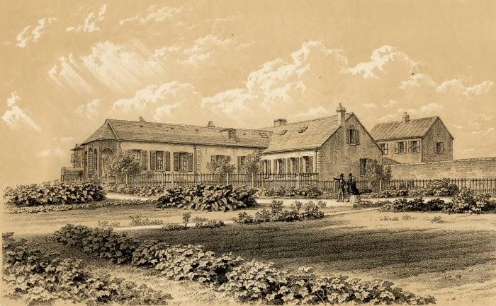 Olney Family Archives