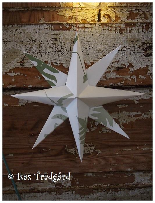 DIY julstjärnor