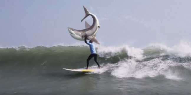 Pro Surfer Fights Off Shark in South Africa
