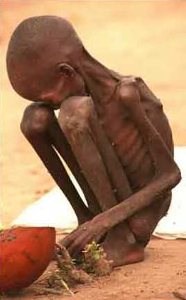 Starving child sudan starving 20children 20268x433