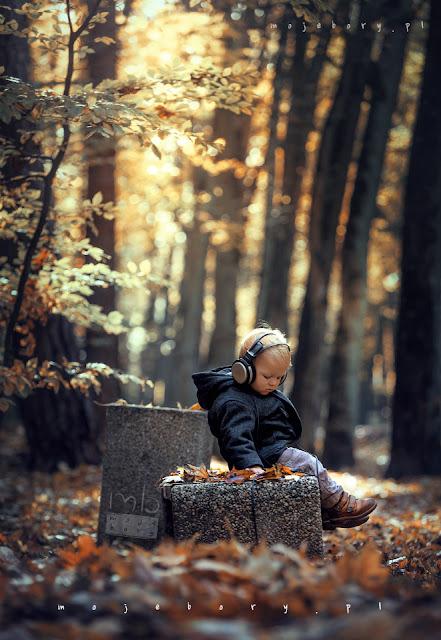jesień w Borach Tucholskich