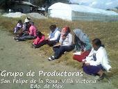 Productoras de Villa Victoria, Edo. de Méx.