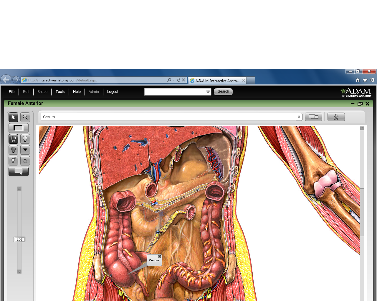 Exelent Adam Interactive Anatomy Image - Physiology Of Human Body ...