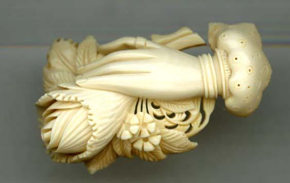 Mammoth Ivory Tusk