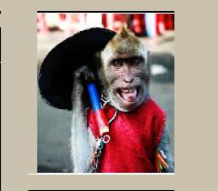 topeng monyet kesenian tradisional