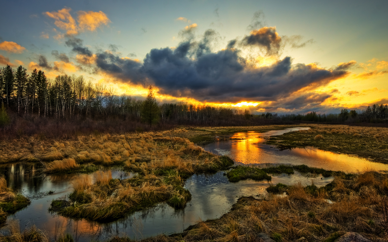 http://1.bp.blogspot.com/-eqwffJ-OtNA/TwDEMygORTI/AAAAAAAAAQU/aBvKBttIimo/s1600/Sandilands-Beautiful-Golden-Sunset-HDR-Wallpaper-Widescreen-1280x800.jpeg