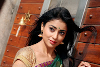 Shriya Saran Hot