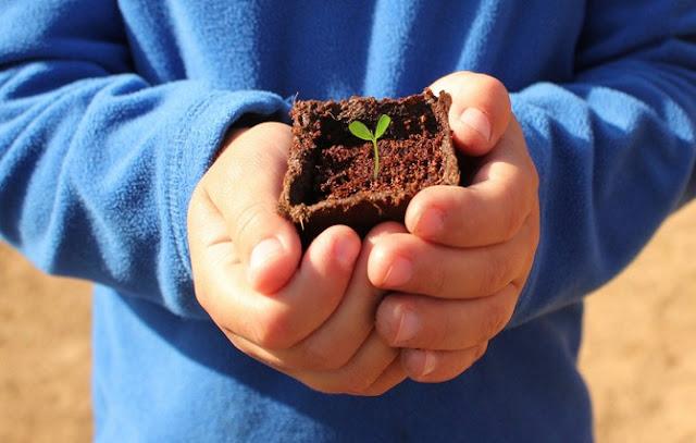 Dengan berkebun anak lebih menghargai alam dan memahami kebesaran Allah