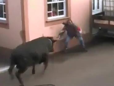 Molido por Toro
