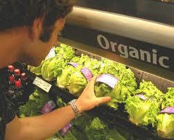 Difference Between Organic and Natural Food - ผักอนามัย ผักปลอดภัยจากสารพิษ ผักปลอดสารพิษ