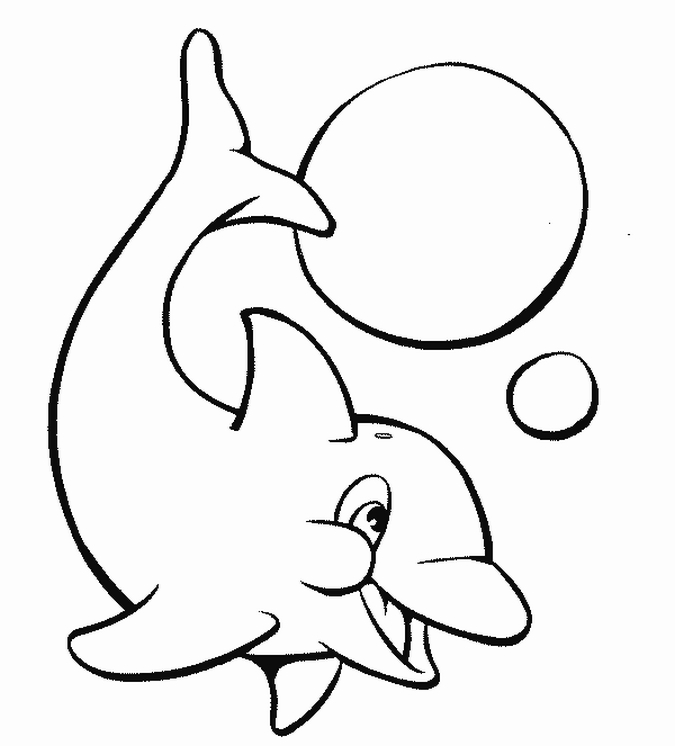 Dolphin Fish Animal Coloring Books for Kids - Coloring Books and Drawing