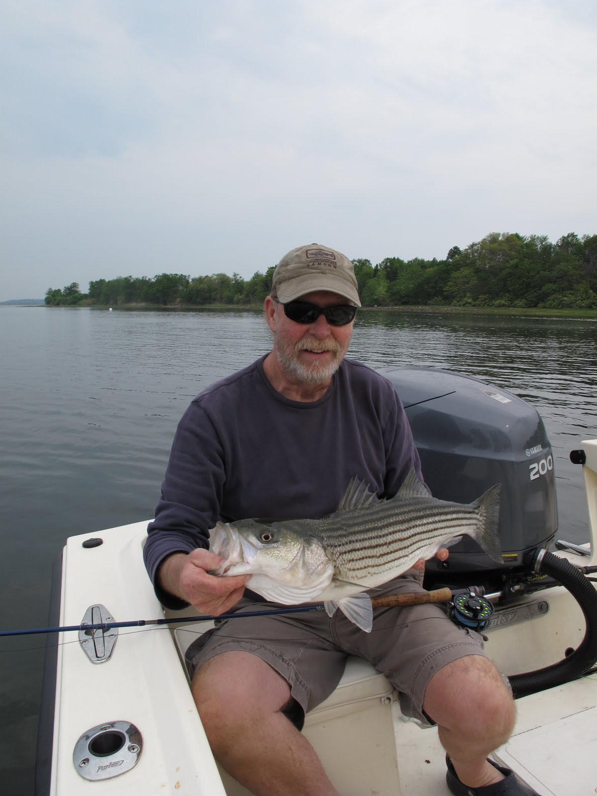 Boston fly fishing and report mass bass for Mass fishing report