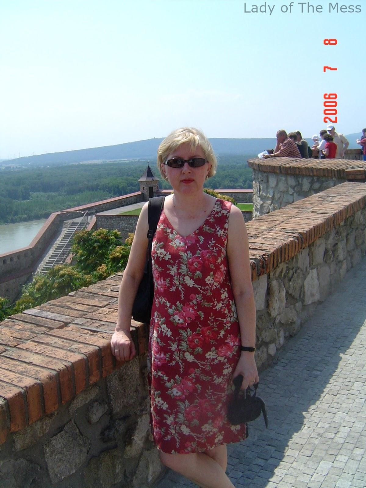 Bratislavan linna, Tonava, loma