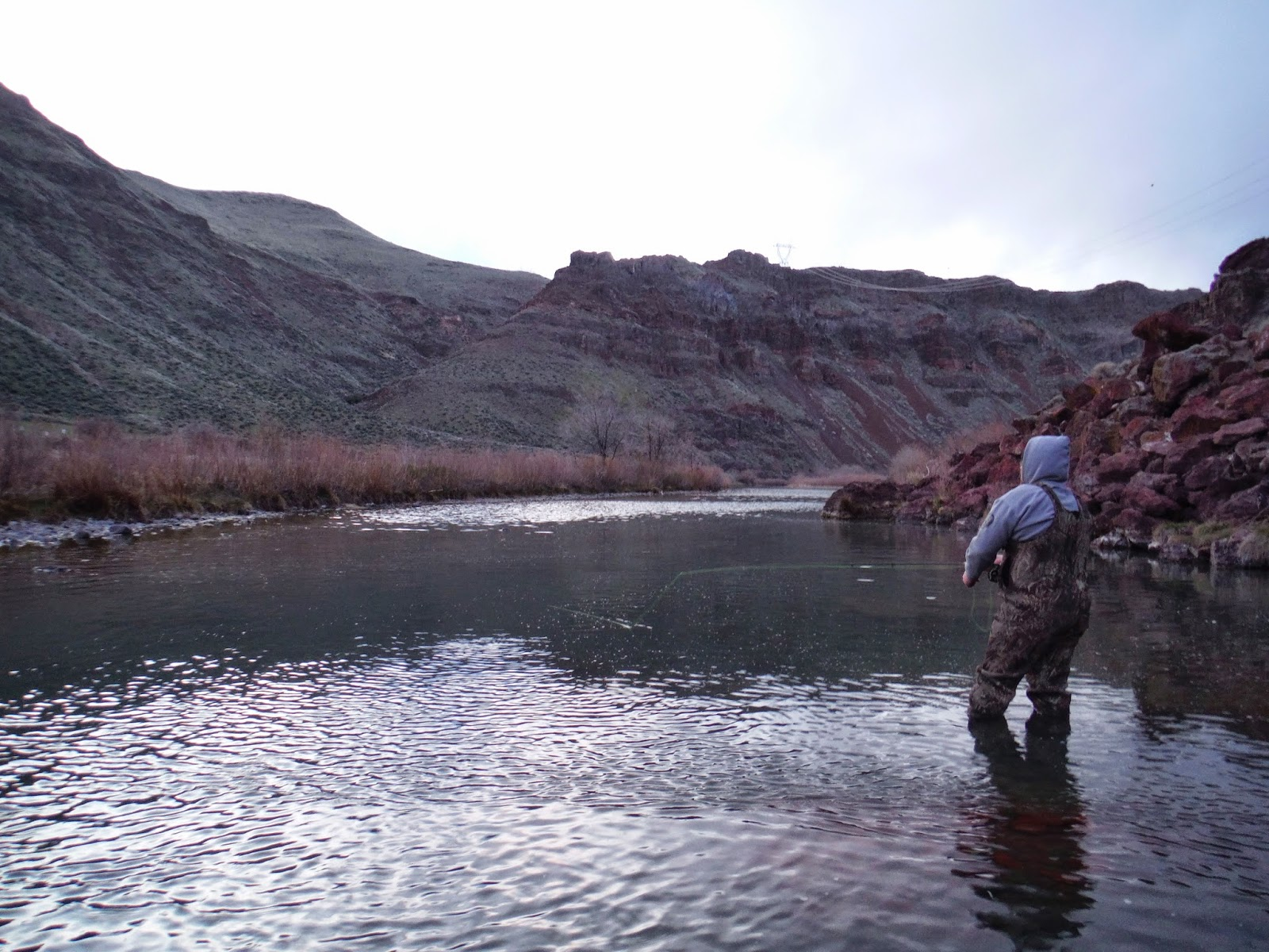 Erik s fly fishing blog curse of the camera for Shadow fly fishing