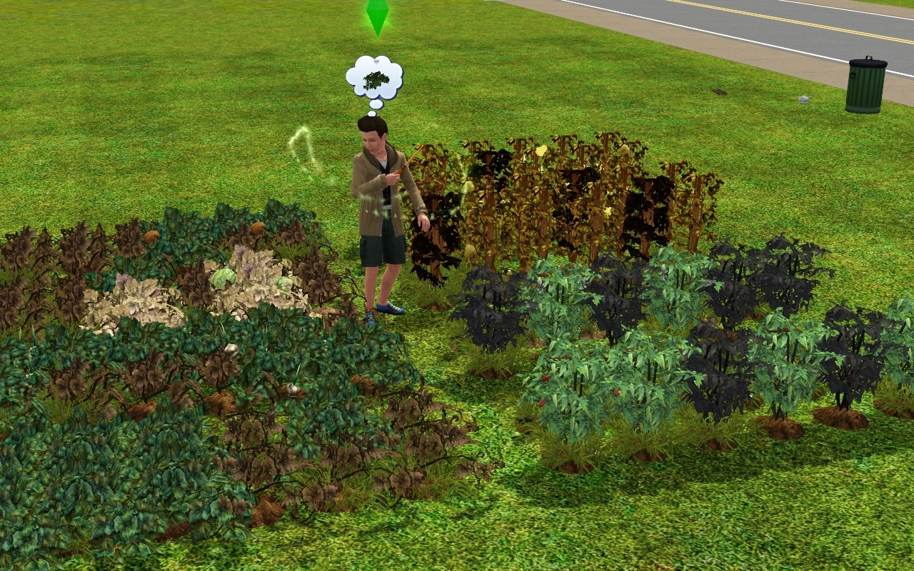 how to build a garden on sims 3