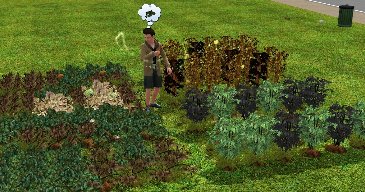 how to grow plants on sims 3
